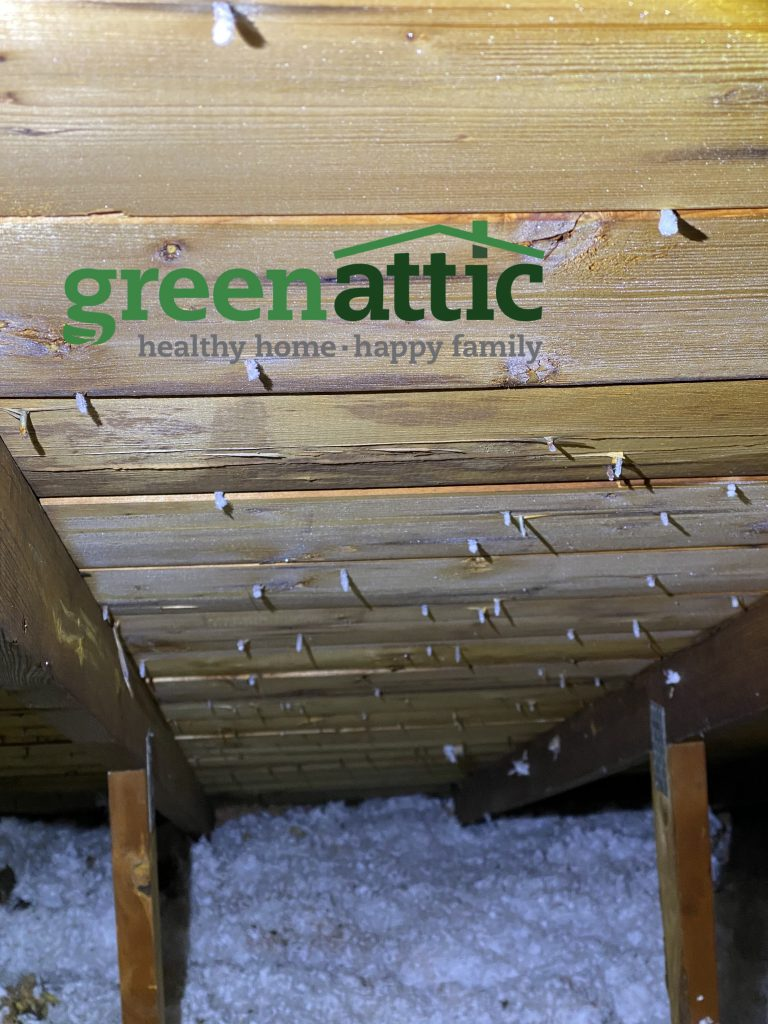 frost on nails green attic insulation