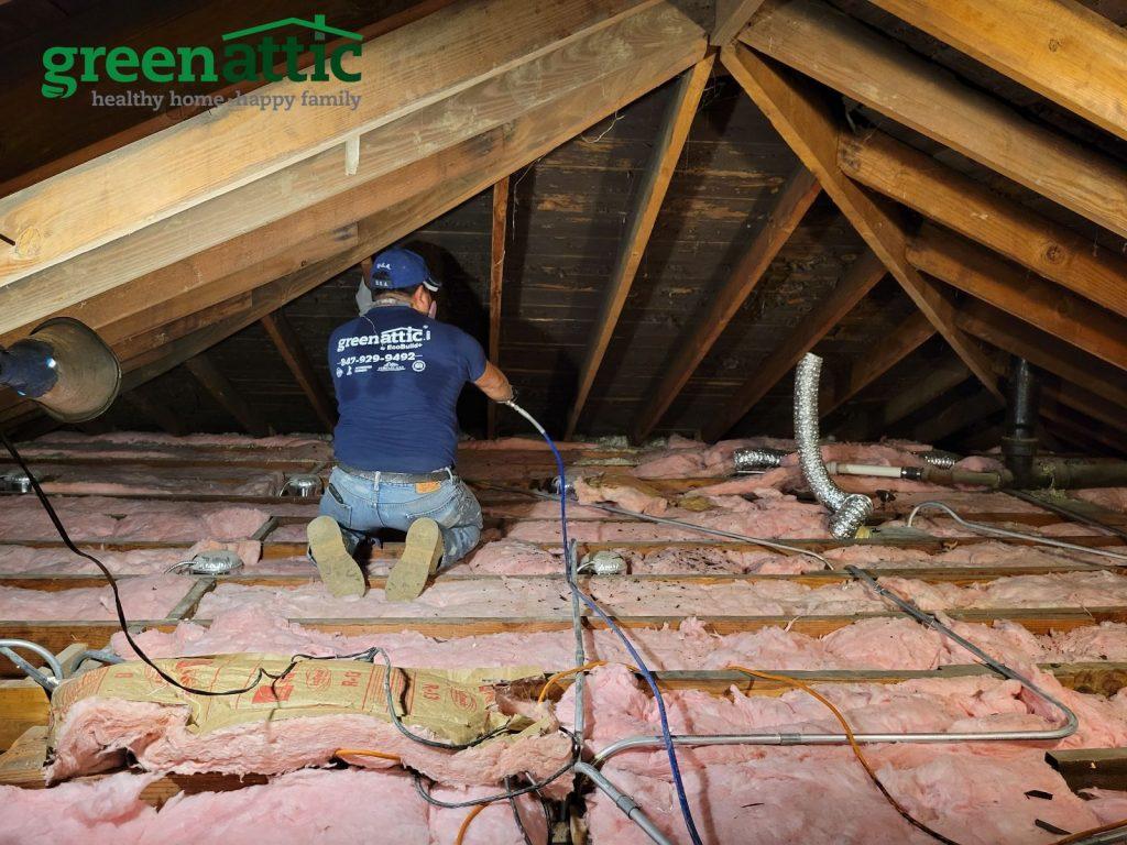 mold treatment mold prevention attic mold