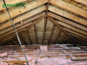 2021 mold treatment mold prevention attic mold buffalo grove Illinois